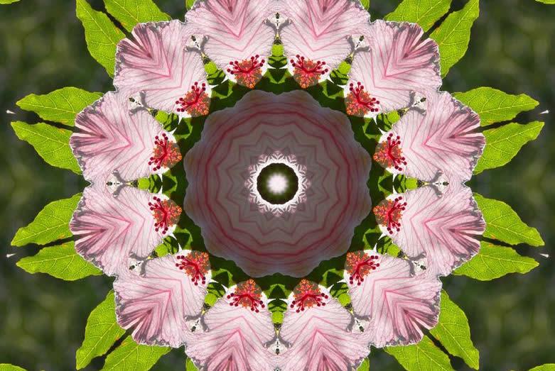 soul-purpose-and-life-path-jane-kennard-circles-within-circles_3409190-781x523