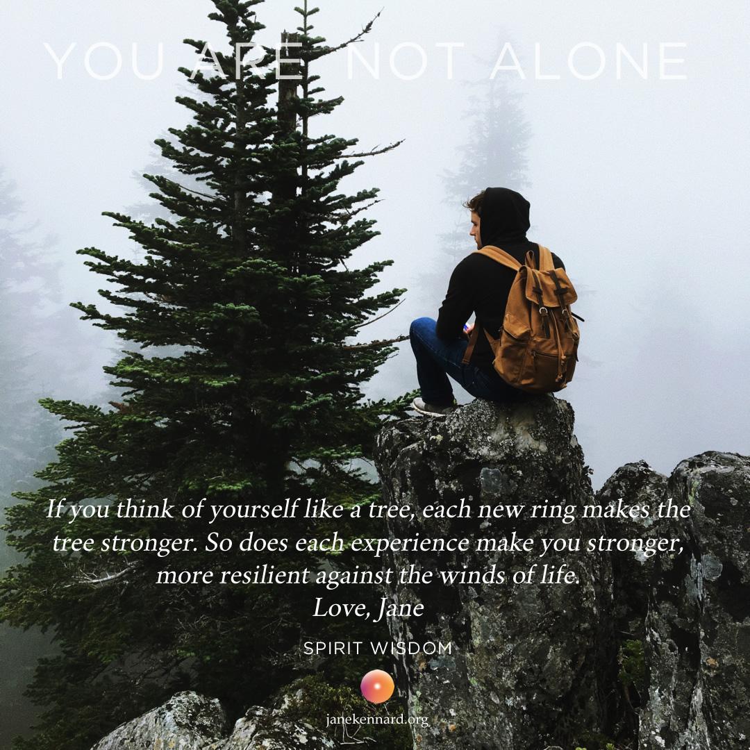 Like-A-Tree-Jane-Kennard-Spirit-Wisdom-You-Are-Not-Alone-unsplash-photo-by-unsplash-photo-Tim-Bogdanov-1461948573049-a5ab4efb6150-1080x1080